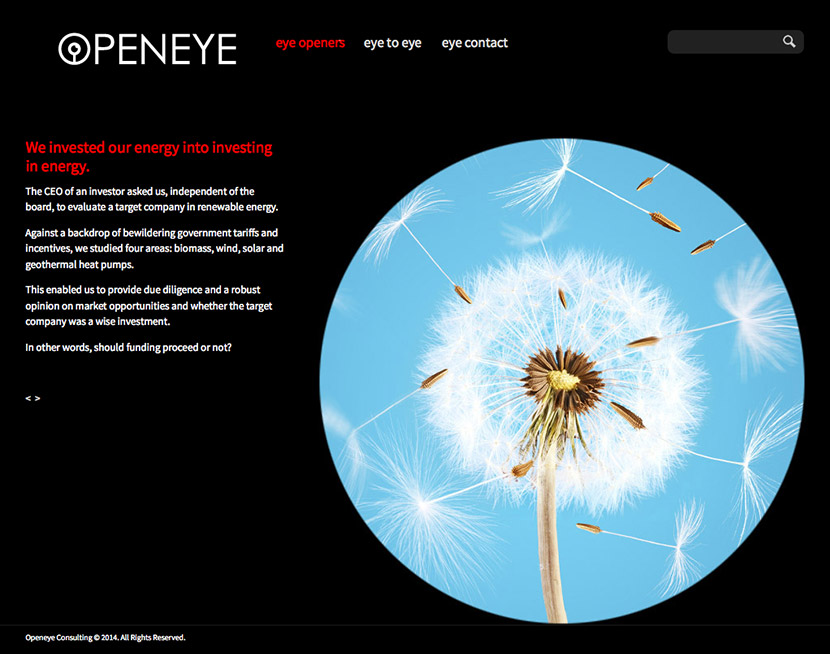 openeye-green-energy investment review